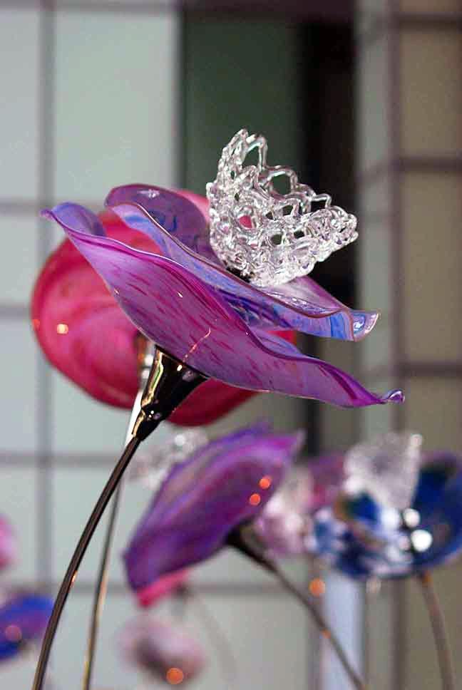 detail-of-flower